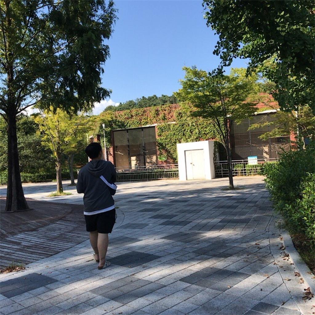 f:id:yukihoppi:20170909104636j:image