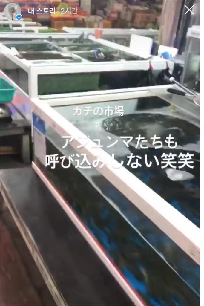 f:id:yukihoppi:20180809145816j:image