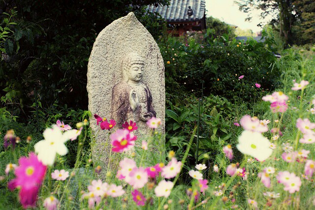 f:id:yukihori-oyaji:20180128095959j:image