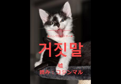 f:id:yukik8er:20171217005508p:plain