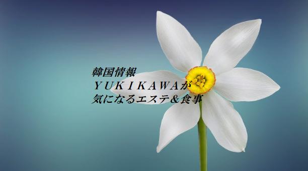 f:id:yukik8er:20180113233229p:plain