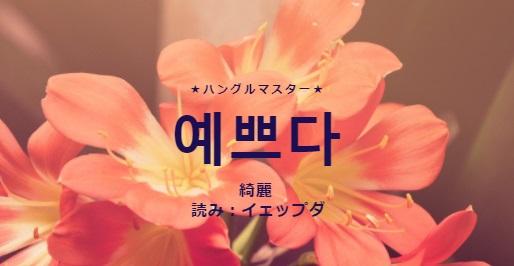 f:id:yukik8er:20180121154506j:plain