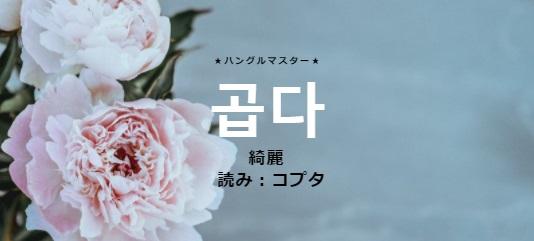 f:id:yukik8er:20180121155103j:plain