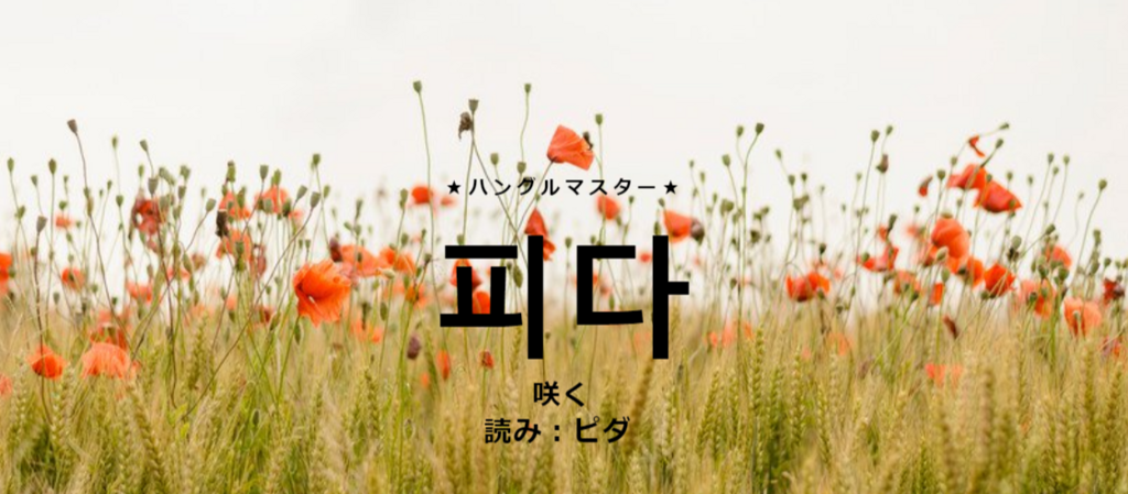 f:id:yukik8er:20180210001459p:plain