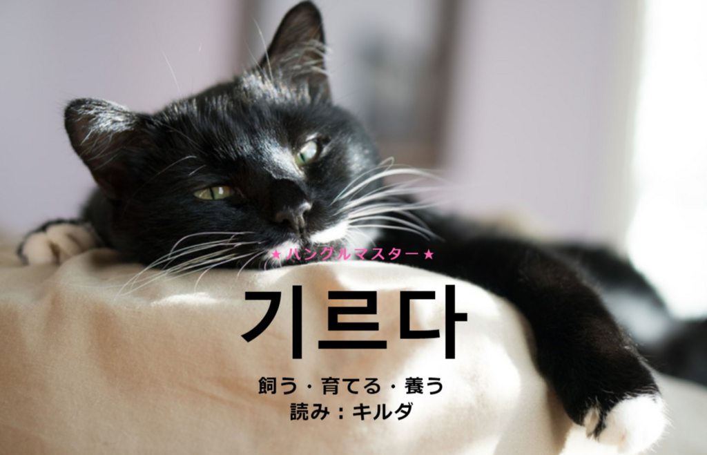 f:id:yukik8er:20180527085021p:plain