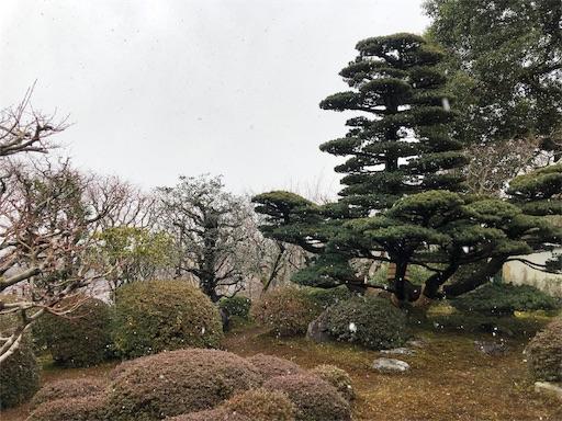 f:id:yukik8er:20190127093544j:image