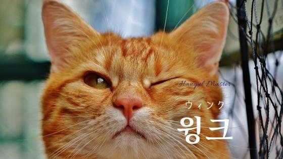 f:id:yukik8er:20190313224915j:plain
