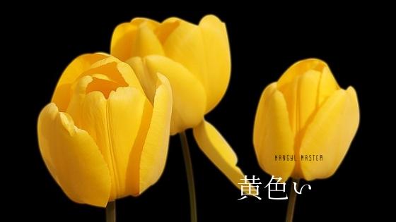 f:id:yukik8er:20190331175652j:plain