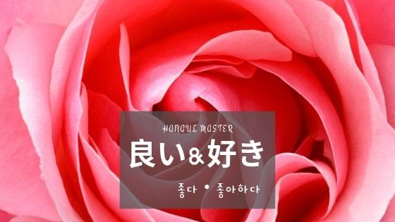 f:id:yukik8er:20190609074815j:plain