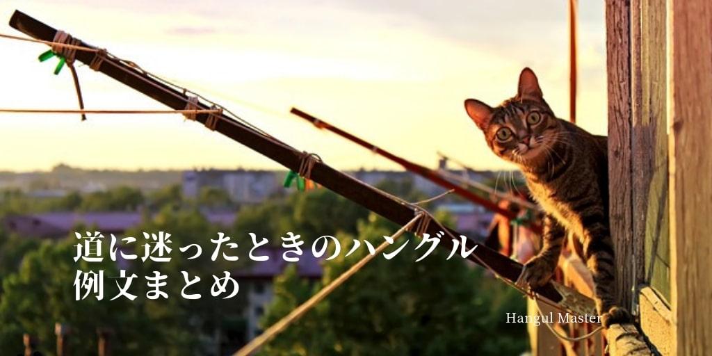 f:id:yukik8er:20190609195928j:plain