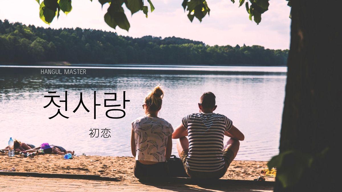 韓国 初恋 モルモット