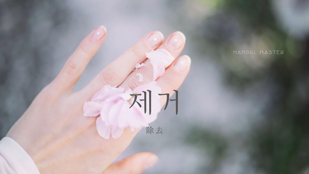 f:id:yukik8er:20191213214014j:plain
