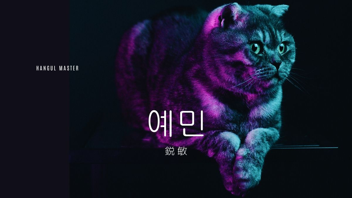 韓国語で「鋭敏」とは?【예민】意味を勉強しよう! - ハングルマスター