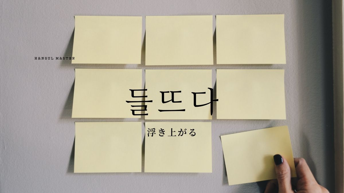 f:id:yukik8er:20200222183905j:plain