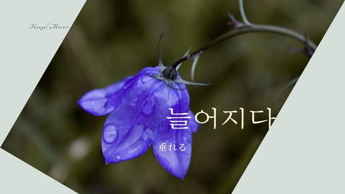 f:id:yukik8er:20200302150144j:plain