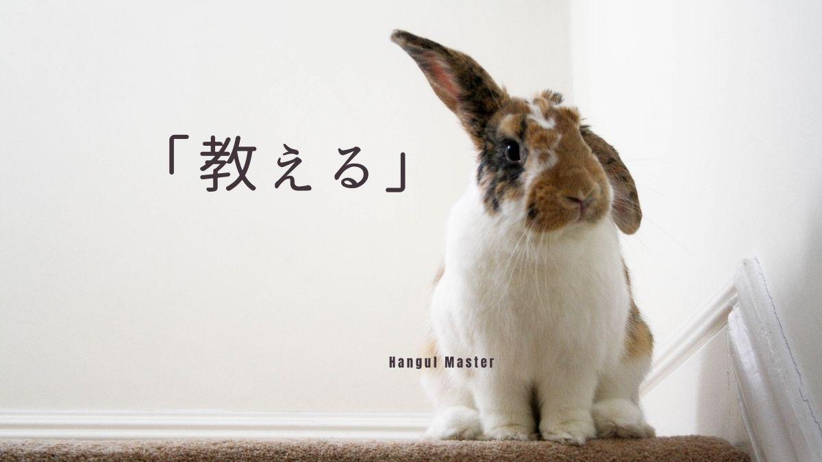 f:id:yukik8er:20200927135811j:plain