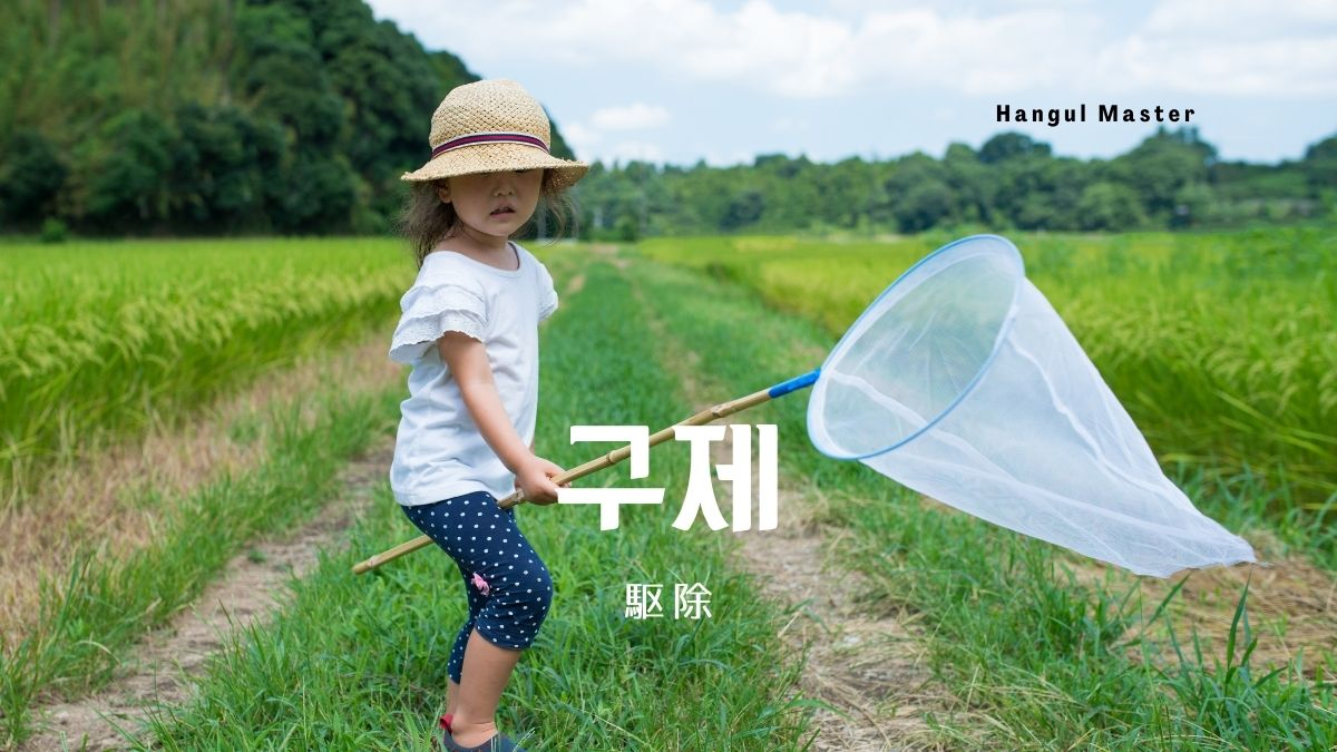 f:id:yukik8er:20201103135246j:plain