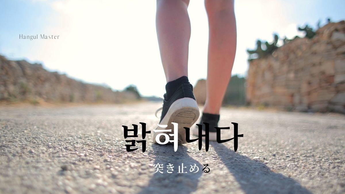 f:id:yukik8er:20201120133300j:plain