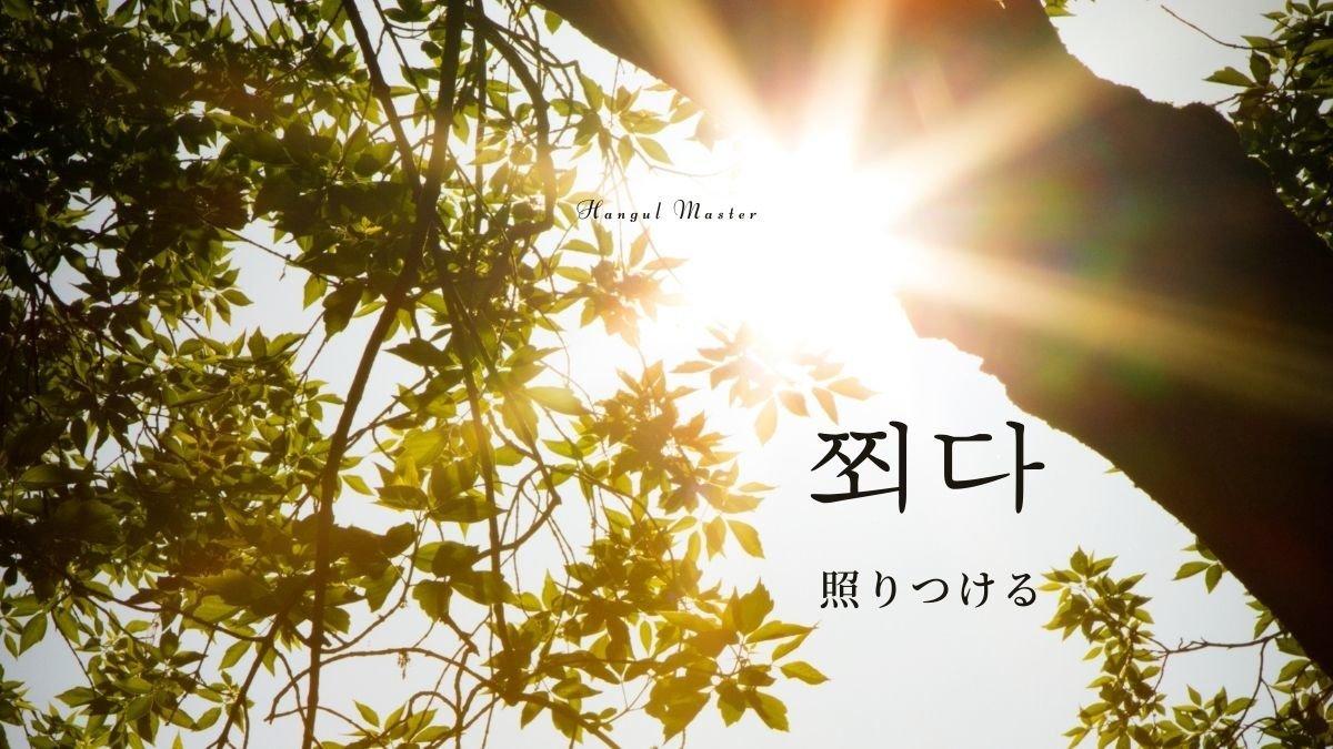 f:id:yukik8er:20210110180639j:plain
