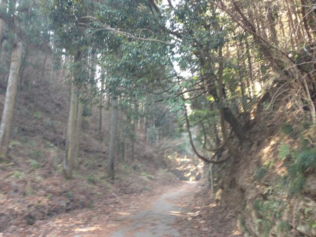 f:id:yukikaze1984:20130317140156j:image