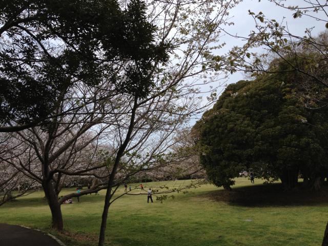 f:id:yukikaze1984:20130327213223j:image
