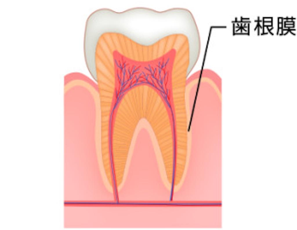 f:id:yukikitao:20170127163653j:image