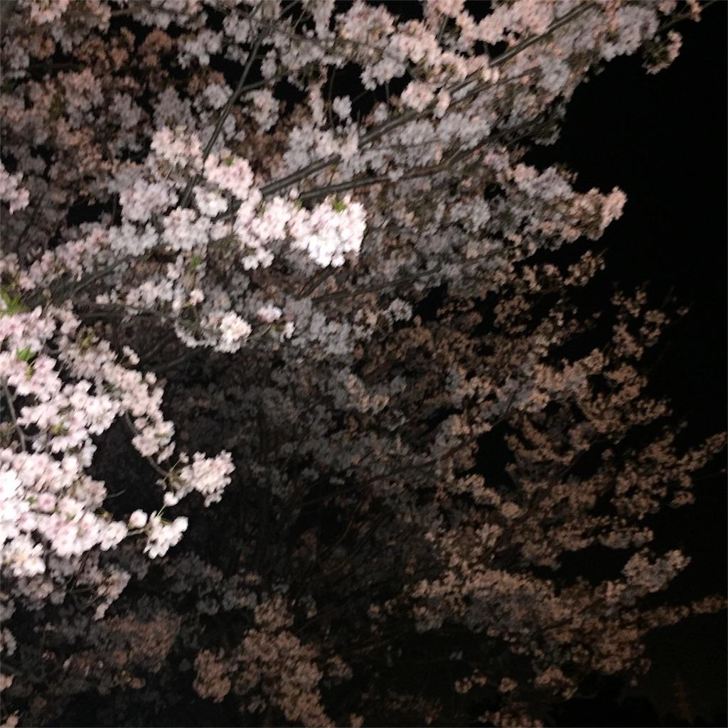 f:id:yukiko-f:20170415233628j:image
