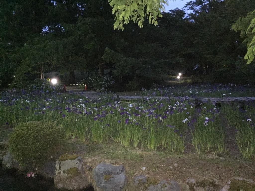 f:id:yukiko-f:20170617224257j:image