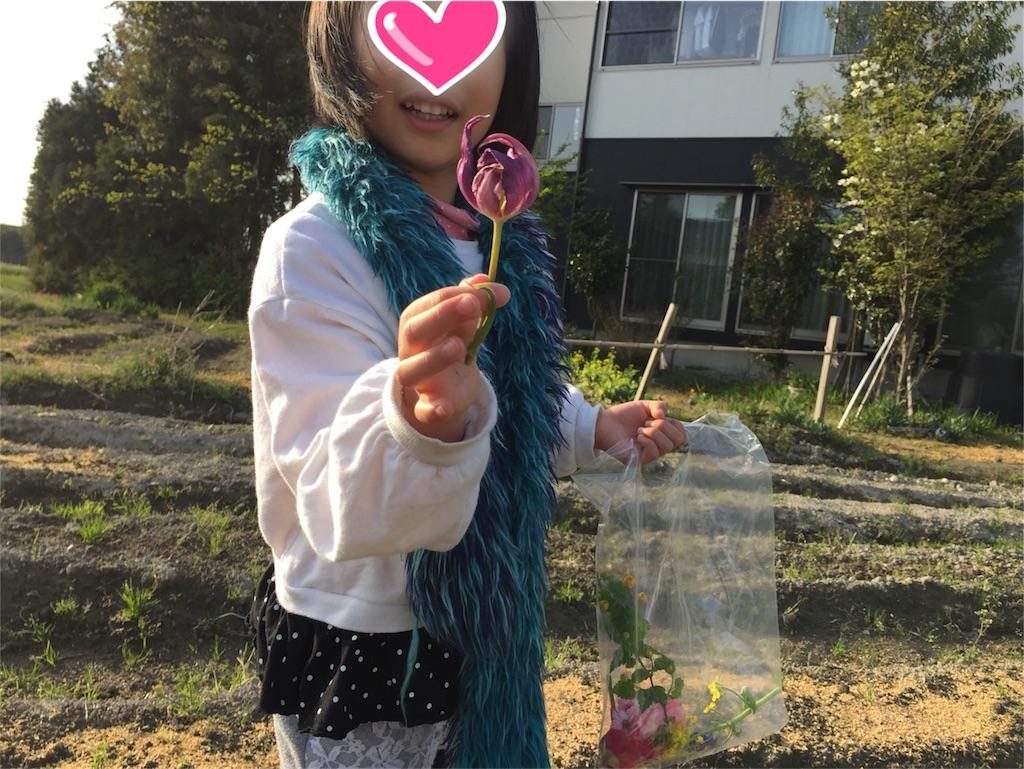 f:id:yukiko-f:20180419224734j:image