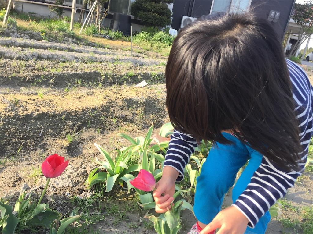 f:id:yukiko-f:20180419224754j:image