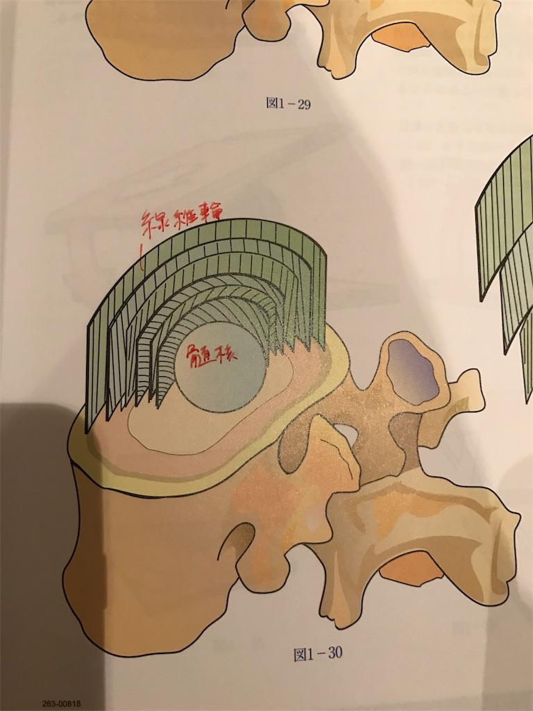 f:id:yukiko-pilates:20161212180746j:image