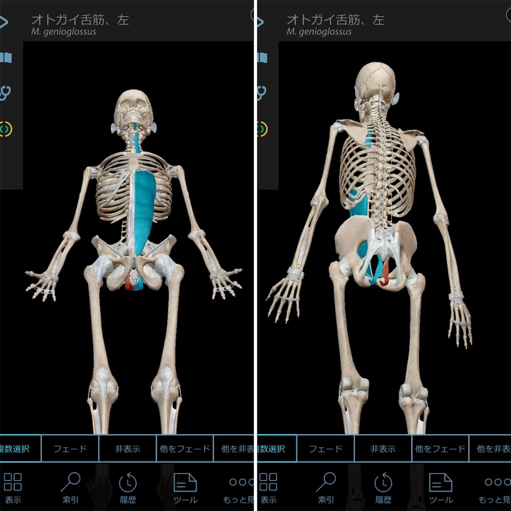 f:id:yukiko-pilates:20170321113019j:image