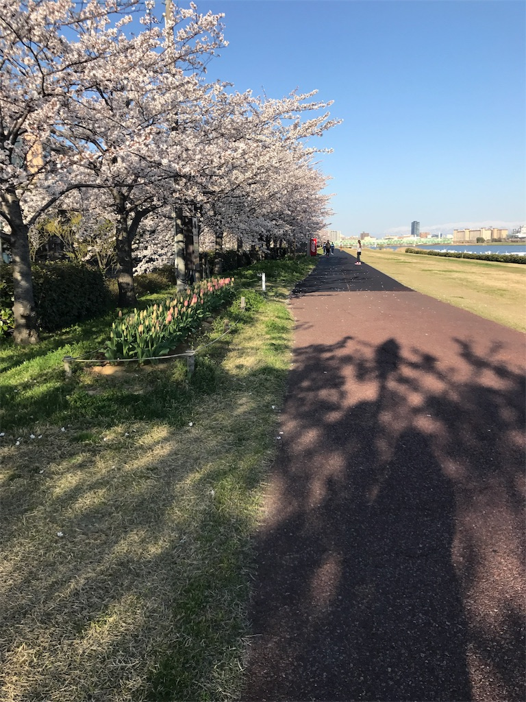 f:id:yukiko-pilates:20170414174356j:image