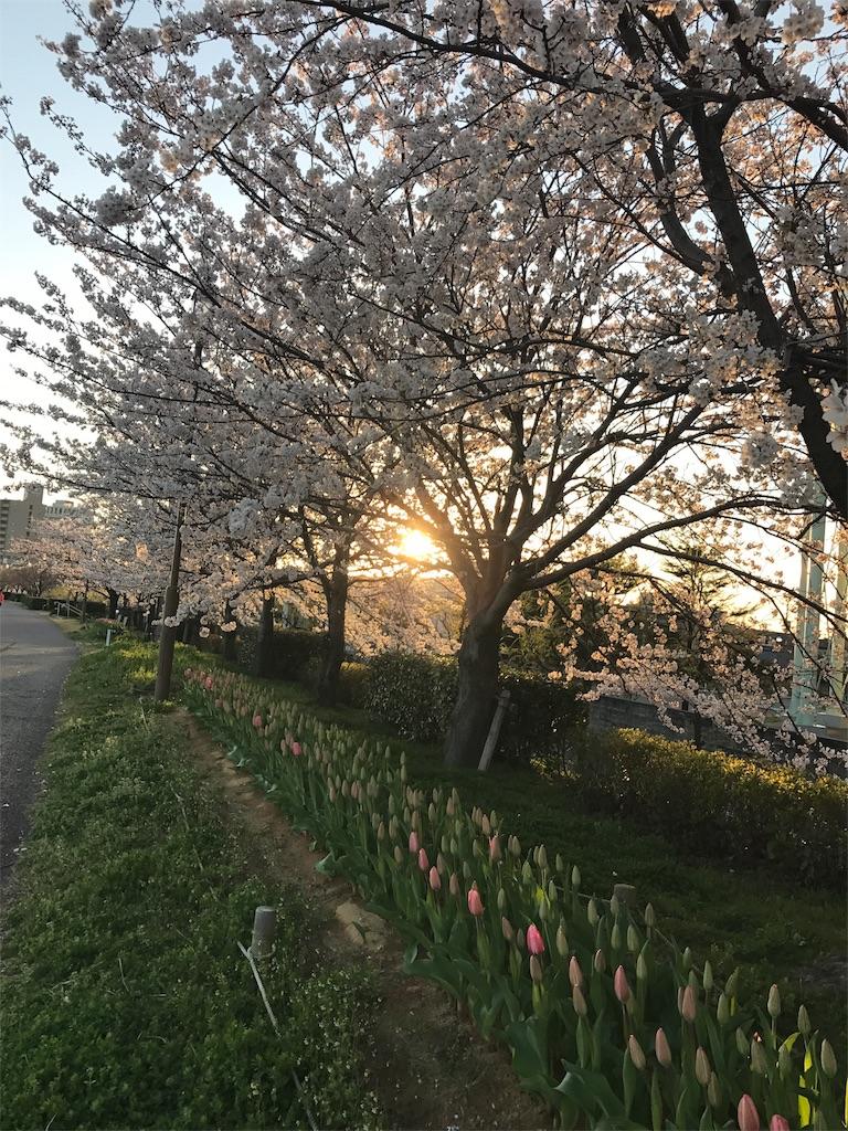 f:id:yukiko-pilates:20170414175353j:image