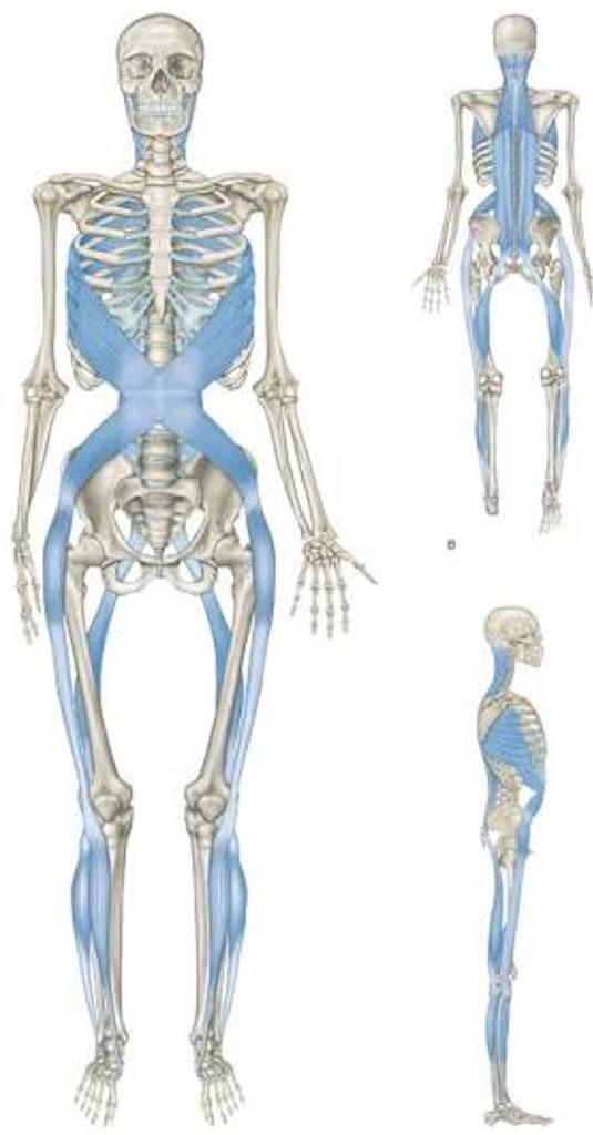 f:id:yukiko-pilates:20180805112141j:image