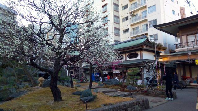 f:id:yukikoashiato:20170223180719j:plain