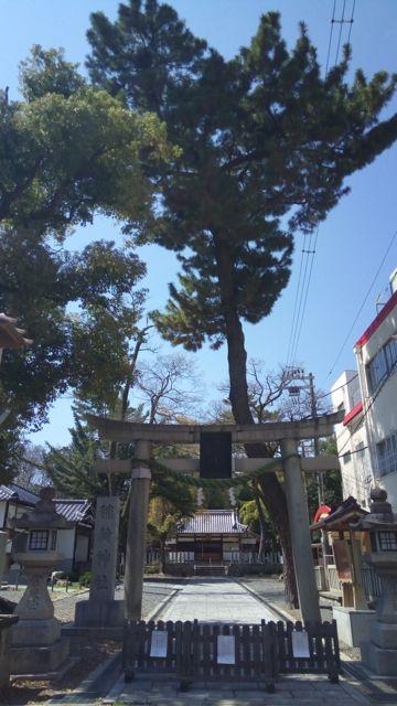 f:id:yukikoashiato:20170412183828j:plain