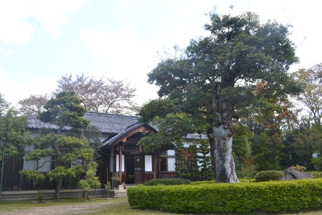 f:id:yukikoashiato:20170529120602j:plain