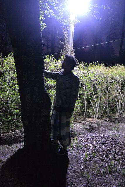 f:id:yukikoashiato:20170611233643j:plain