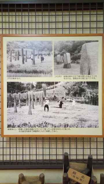 f:id:yukikoashiato:20170614211811j:plain
