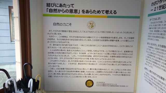 f:id:yukikoashiato:20170614211837j:plain