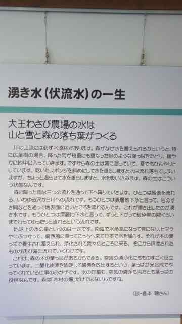 f:id:yukikoashiato:20170614211838j:plain