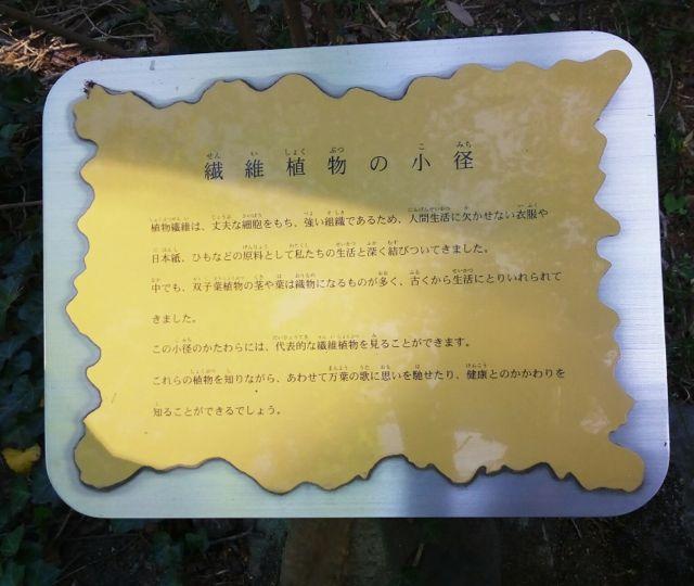 f:id:yukikoashiato:20170627181528j:plain