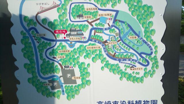 f:id:yukikoashiato:20170627181539j:plain