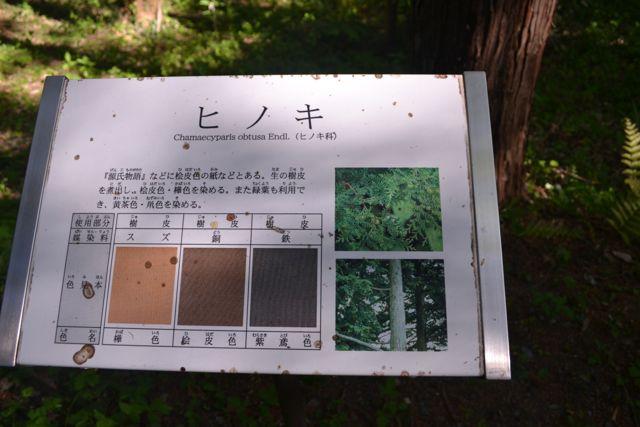 f:id:yukikoashiato:20170627181602j:plain