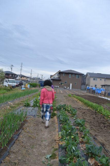 f:id:yukikoashiato:20170711155100j:plain