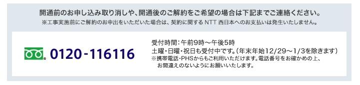 f:id:yukikolog:20150818204314j:plain