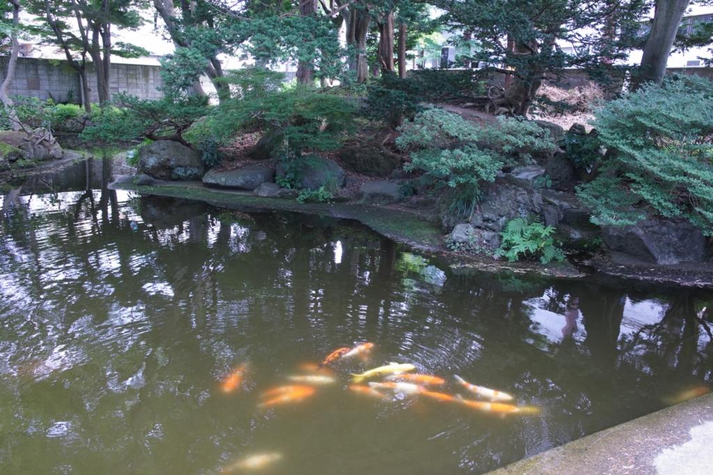 f:id:yukimaru-yuge:20161127212112j:plain