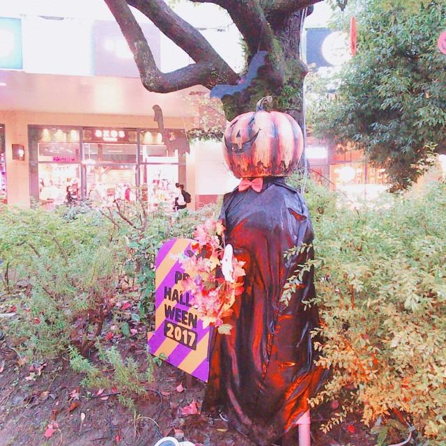f:id:yukimaru1769:20171023192330j:image