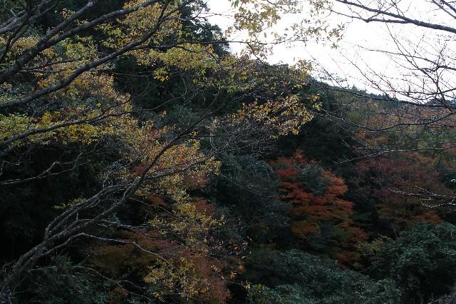 f:id:yukimaru1769:20171112221358j:image